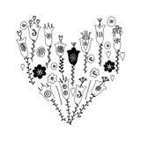 As flores e as folhas tiradas mão rabiscam Cores brancas monocromáticas, pretas de ana Isolado no fundo branco ilustração stock