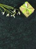 As flores e o giftbox de Snowdrop no mármore da Guatemala de Verde surgem Fotografia de Stock Royalty Free
