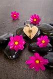 As flores e a serapilheira cor-de-rosa do cosmos dão forma ao coração com chave de bronze no bl Foto de Stock