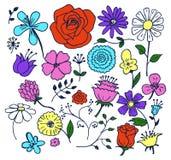 As flores entregam a ilustração tirada do vetor dos elementos ilustração royalty free