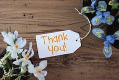 As flores, etiqueta, texto agradecem-lhe Imagens de Stock