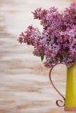 As flores lilás frescas no metal amarelam o jarro contra o fundo branco Imagens de Stock