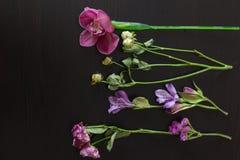 As flores picam em uma obscuridade de madeira Fotos de Stock