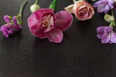 As flores picam em uma obscuridade de madeira Imagem de Stock Royalty Free
