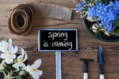 As flores, sinal, mola do texto estão vindo Fotografia de Stock