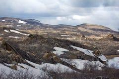 As florestas as mais northernmost em Europa são afetadas por fundições de ferro e de aço fotografia de stock