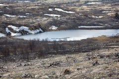As florestas as mais northernmost em Europa são afetadas por fundições de ferro e de aço imagem de stock