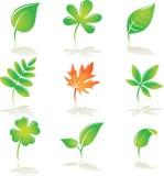 As folhas ajustaram-se Ilustração do Vetor