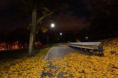 As folhas caídas outono encontram-se no trajeto em um parque da cidade imagem de stock
