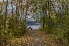 As folhas da queda cobrem um caminho que conduz a um rio Imagens de Stock Royalty Free