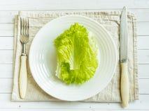As folhas da salada verde em uma placa branca, cutelaria Imagens de Stock