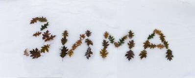 As folhas de bordo do inverno da inscrição na neve Imagem de Stock
