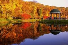 As folhas de outono imagem de stock royalty free