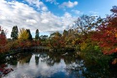 AS FOLHAS de OUTONO COLORIDAS TEMPERAM, cores da folha do outono com o santuário da bordadura da reflexão da skyline e ponte da p Foto de Stock Royalty Free