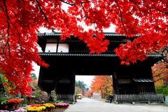 As folhas de outono em Hirosaki estacionam em Aomori, Japão fotografia de stock