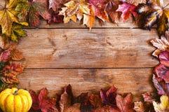 As folhas de outono moldam a beira Fotos de Stock
