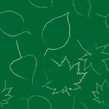 As folhas de outono são tiradas com giz no quadro preto Foto de Stock