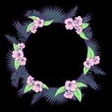 As folhas de palmeira e as flores circundam o quadro na BG preta Foto de Stock