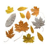 As folhas metálicas da prata do cobre do ouro do outono ajustaram-se isolado no branco imagem de stock royalty free