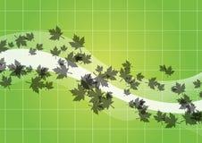 As folhas verdes fluem Fotos de Stock Royalty Free