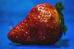 As frutas e legumes no alimento e no colesterol saudáveis do fundo azul fazem dieta o conceito Comer limpo, fazendo dieta, desint Fotografia de Stock