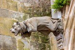 As gárgulas, que funcionam como downspouts, projetam-se da parede da catedral de Carcassonne Fotos de Stock