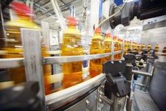 As garrafas amarelas com cerveja clara vão na correia transportadora Foto de Stock Royalty Free