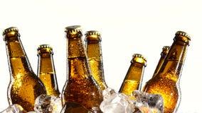 As garrafas com cerveja, luz do sol caem nas garrafas de vidro escuras Fundo branco Fim acima vídeos de arquivo