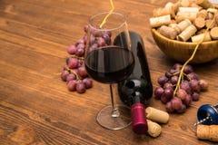 As garrafas do vinho, dos vidros do vinho, das uvas e da cortiça wine Imagens de Stock