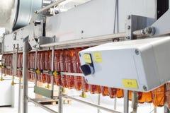 As garrafas plásticas de Brown para a cerveja vão na correia transportadora imagem de stock royalty free