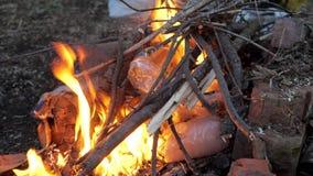 As garrafas plásticas estão queimando-se no fogo video estoque