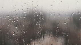 As gotas da chuva em janelas do agregado familiar vídeos de arquivo