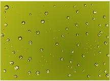 As gotas de água verdes realísticas dispersadas no fundo verde Vector a ilustração Fotografia de Stock