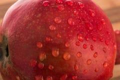 As granadas do fruto com gotas da água fecham-se acima Imagem de Stock