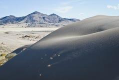 As grandes dunas de Andy na grande bacia foto de stock royalty free