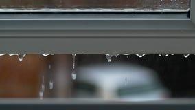 As grandes gotas da chuva golpeiam a placa de janela aberta durante o chuveiro pesado em Inglaterra Imagens de Stock Royalty Free