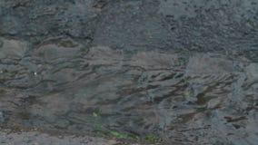 As grandes gotas e as pedras de granizo da chuva golpeiam a superfície de estrada durante o chuveiro pesado em Inglaterra Foto de Stock Royalty Free