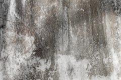 As grandes texturas e fundos do grunge aperfeiçoam o fundo com espaço Foto de Stock