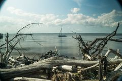 As if seen through a telescope, a small sailing raft framed by driftwood with the horizon, beautiful cloud and sky in royalty free stock image
