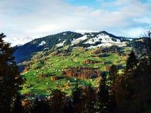 As inclinações suaves da montanha de Grossberg, acima do vale de Seeztal foto de stock royalty free