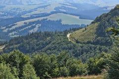 As inclinações das montanhas Carpathian Fotografia de Stock Royalty Free