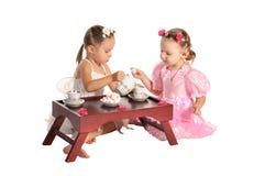 As irmãs bonitas dos gêmeos têm o chá isolado imagens de stock