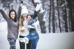 As jovens mulheres bonitas da amiga vestiram-se calorosamente no parque do inverno fotografia de stock royalty free
