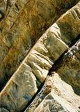 As lajes eretas grossas curvy curvadas da rocha encontraram no litoral de Califórnia Fotografia de Stock Royalty Free