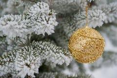 As lantejoulas douradas bonitas brincam a suspensão em um ramo do pinho Needl Fotos de Stock Royalty Free