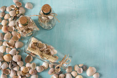 As lembranças gostam de garrafas com conchas do mar Decoração interior Imagens de Stock