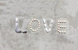 As letras de Shell fazem o amor da palavra na parede do cimento imagens de stock royalty free