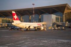 As linhas aéreas internacionais suíças do plano HB-IJE de Airbus A320 no serviço no terminal novo do aeroporto de Pulkovo Imagem de Stock Royalty Free