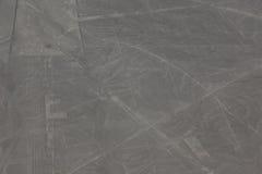 As linhas de Nazca no Peru imagens de stock royalty free