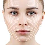 As linhas gráficas mostram o efeito de levantamento facial na pele fotos de stock